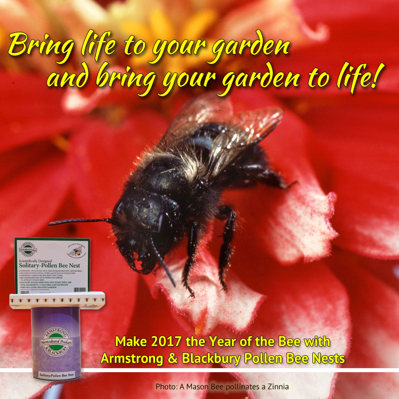 Bring life to your garden.