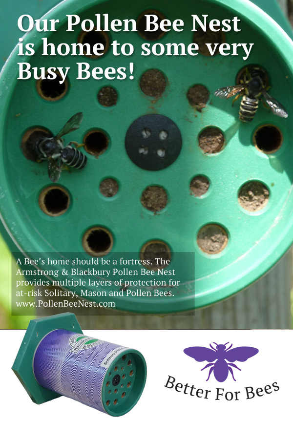 Provide Water For Pollen Bees